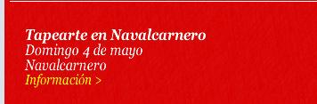 Tapearte en Navalcarnero