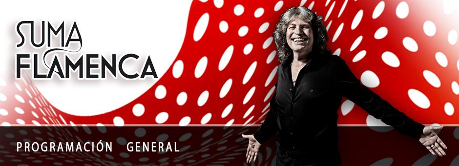 Suma Flamenca 2013. Programación general.